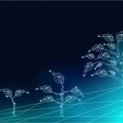 digital transformation nel marketing